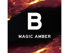 Blood Concept B Magic Amber