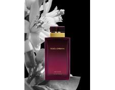 D&G Pour Femme Intense (Dolce & Gabbana)